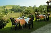 Feldenkrais erleben - Wohlfühlwochenende Piemonte Weingut